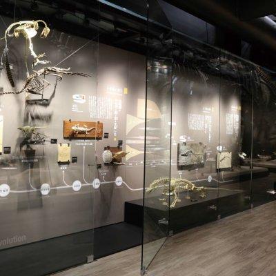 画像2: ステンレス鋼製大型ガラス用スライド丁番MICROMASTER MFH-300