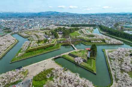道南【五稜郭公園】の桜